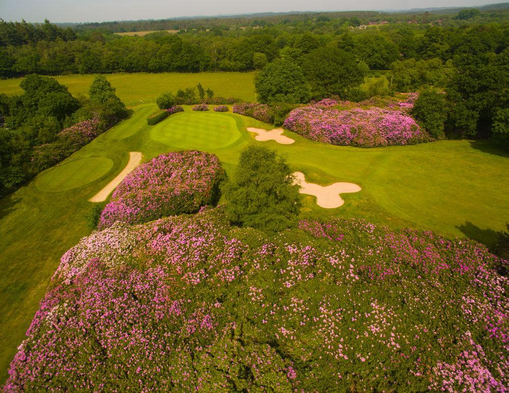 The Dorset Golf Club